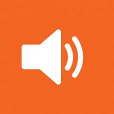 Модуль обработки аудио потоков (LS)